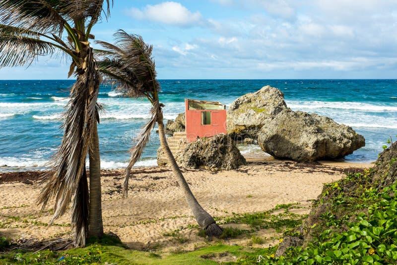 海滩的被放弃的房子 免版税库存图片