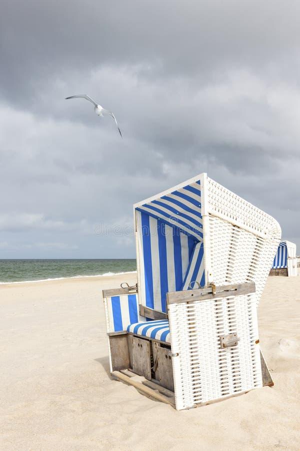 海滩睡椅和海鸥在叙尔特岛 库存图片