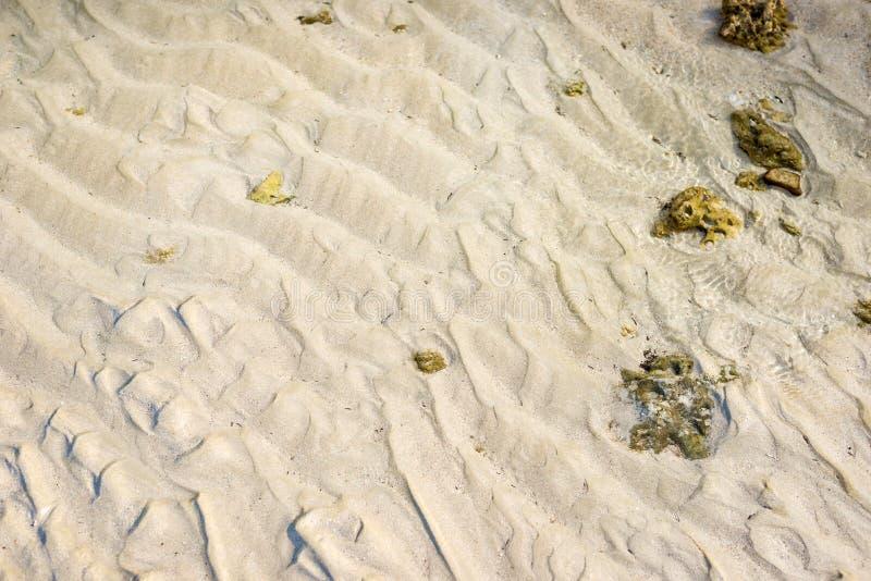 海滩纹理 图库摄影