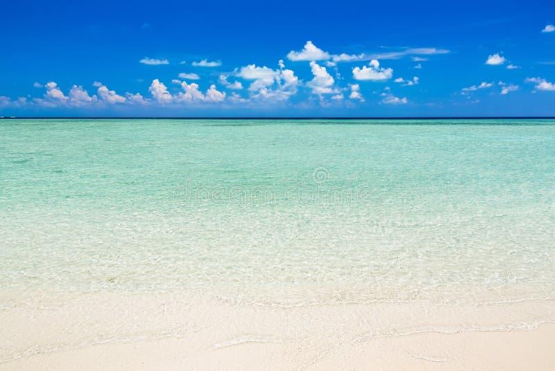 海滩美丽的海洋 免版税库存照片