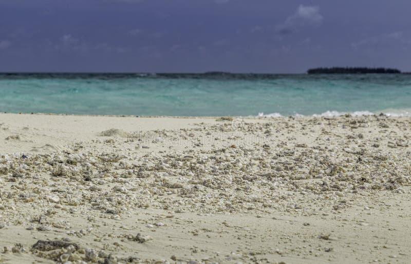 海滩美好的全景在马尔代夫 图库摄影