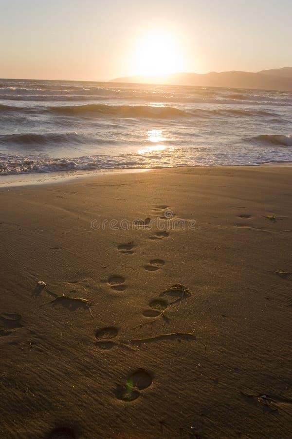 海滩脚印 免版税库存照片