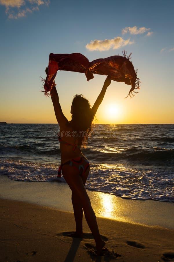 海滩色的护钣风 免版税图库摄影