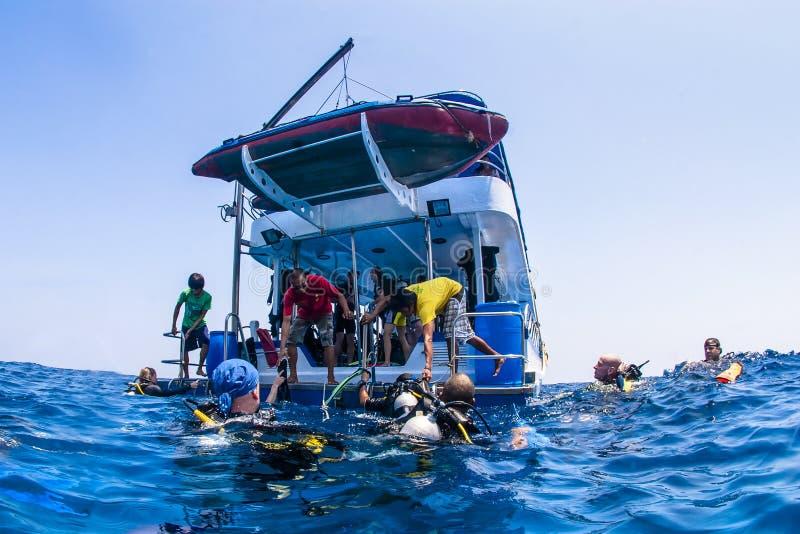 海洋表面上的轻潜水员 库存图片