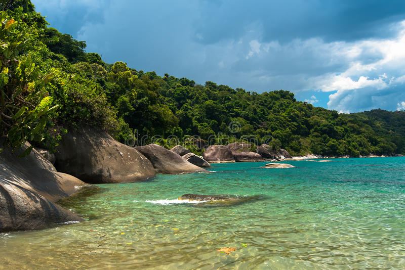 海滩巴西热带 库存照片