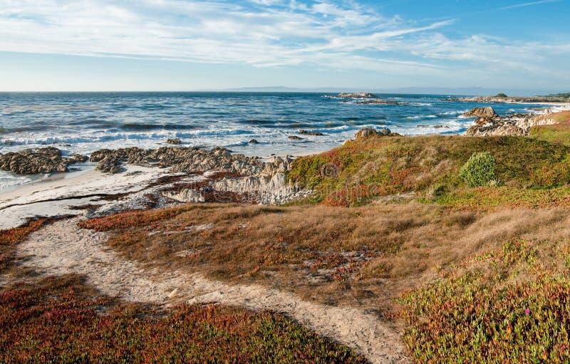 海滩道路 库存图片