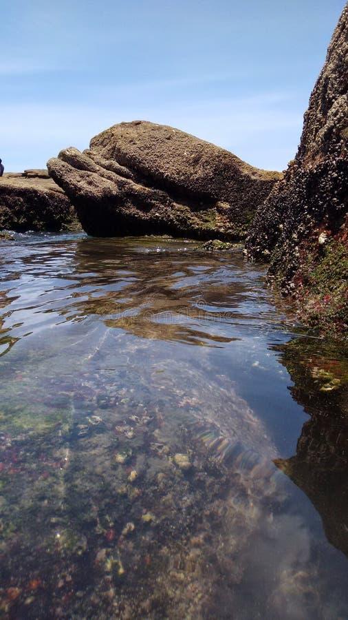 海滩里约热内卢 库存照片