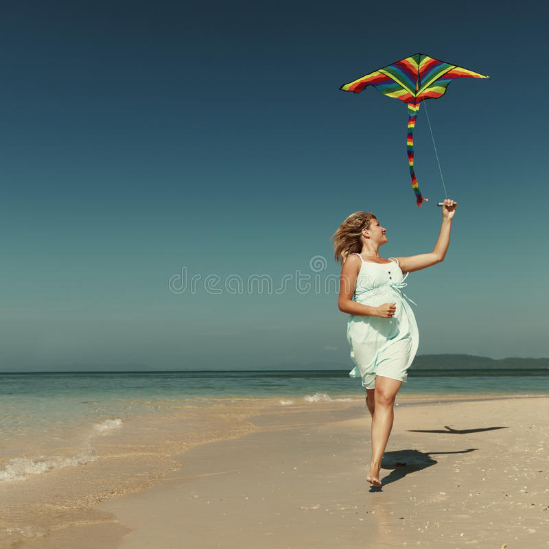 海滩风筝飞行逃走假日概念 库存图片