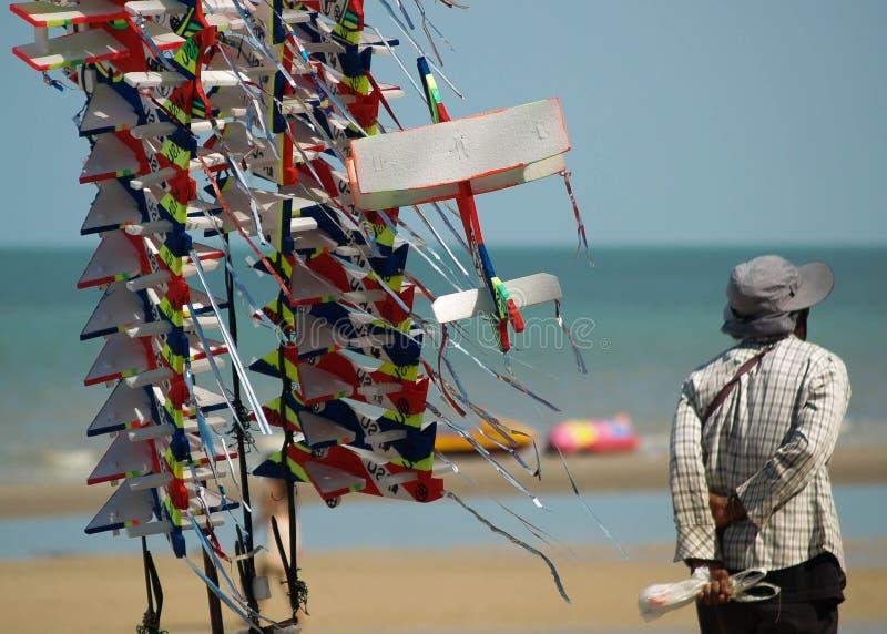 海滩风筝 库存照片