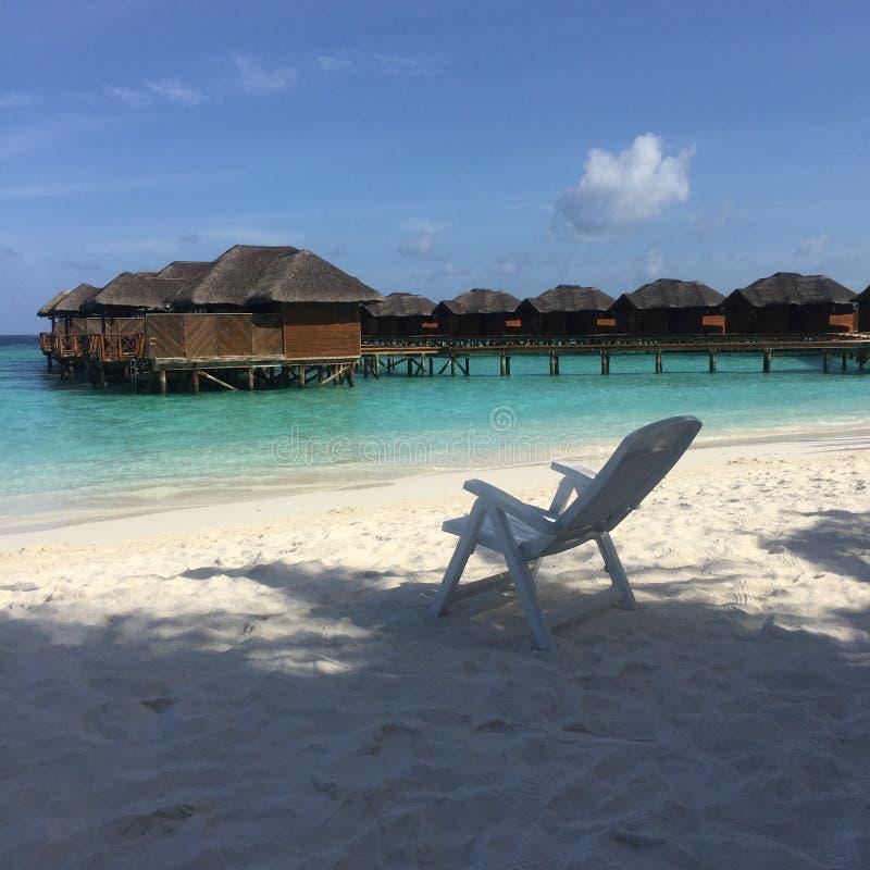 海滩马尔代夫 库存图片