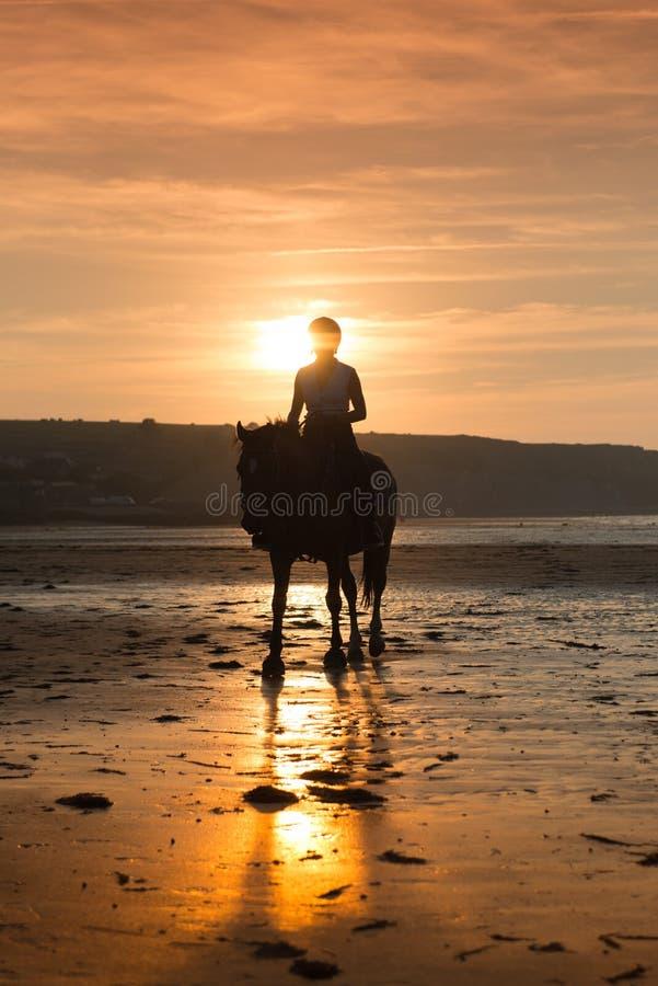海滩马骑术 图库摄影