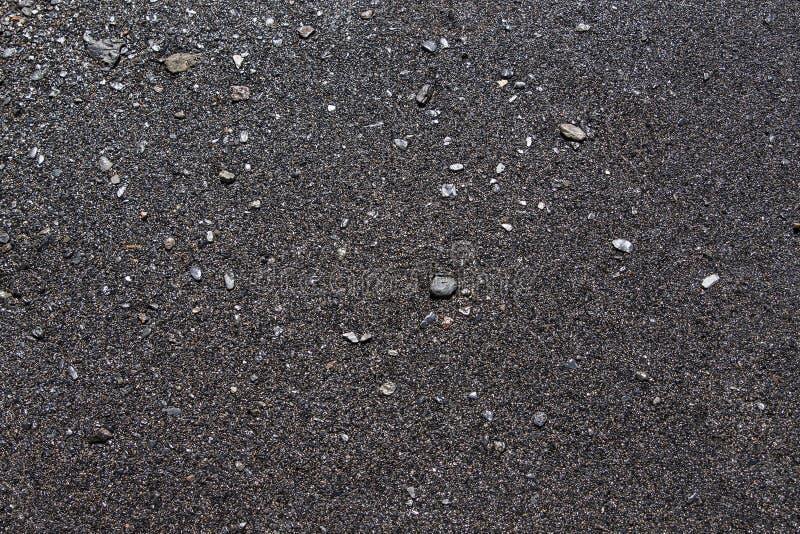 黑海滩, Lorneville,新不伦瑞克,加拿大大西洋省份的 免版税库存图片