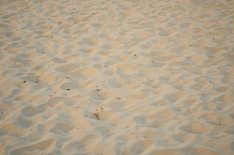 海滩sand.summer背景 库存照片