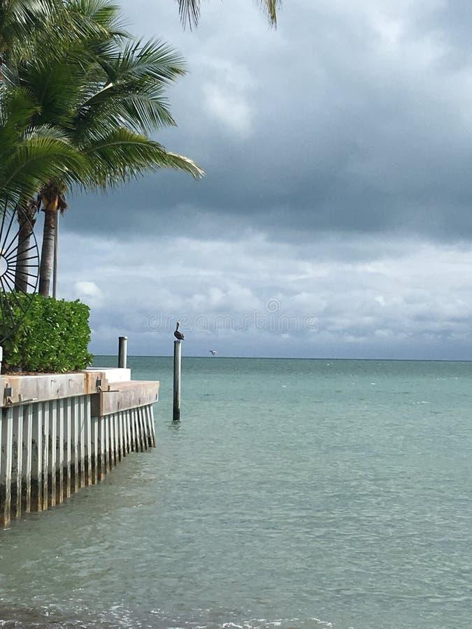 海洋Storm.Cloudy天空和波浪 免版税图库摄影