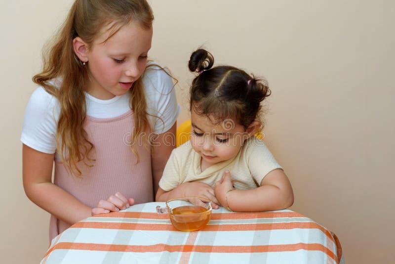 浸洗苹果切片的犹太孩子入在犹太新年的蜂蜜 免版税库存照片