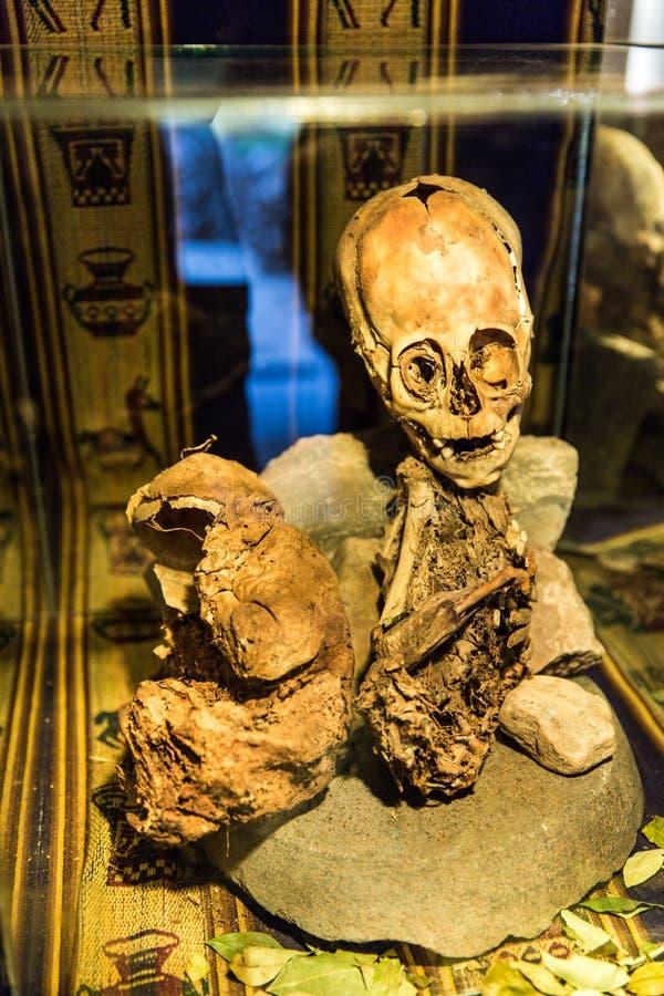 涂香油的妈咪和头骨在秘鲁。在Chauchilla考古学站点,纳斯卡,美国的骨头 免版税库存照片