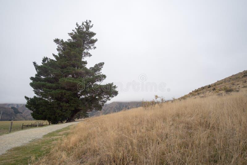消失对天际的路在太阳下发出光线下来低谷剧烈的风雨如磐的云彩 在山路的日落 库存图片