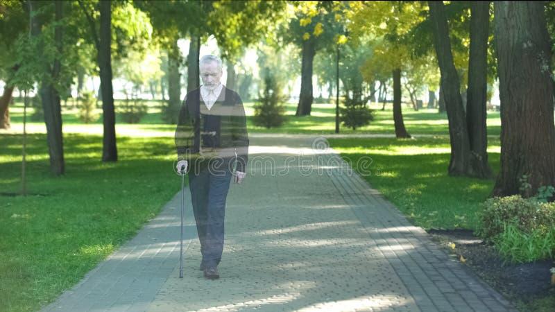 消失成熟的祖父走在公园和,死亡概念,损失 库存图片