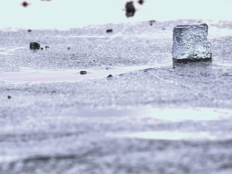 消失的冰川 融化冰河对海底生态系的姿势威胁 库存图片