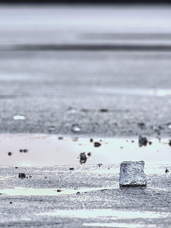 消失的冰川 融化冰河对海底生态系的姿势威胁 免版税库存照片