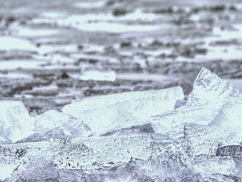 消失的冰川 融化冰河对海底生态系的姿势威胁 图库摄影