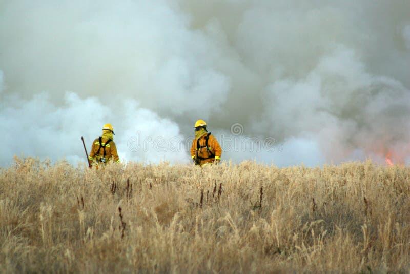 消防员工作 库存图片