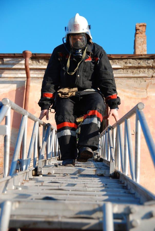 消防员 库存图片