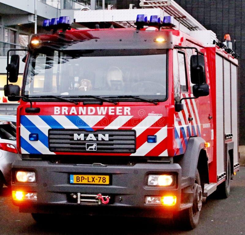 消防队的Ttruck在荷兰叫在红色汽车的Brandweer有蓝色和白色脱模的 库存图片