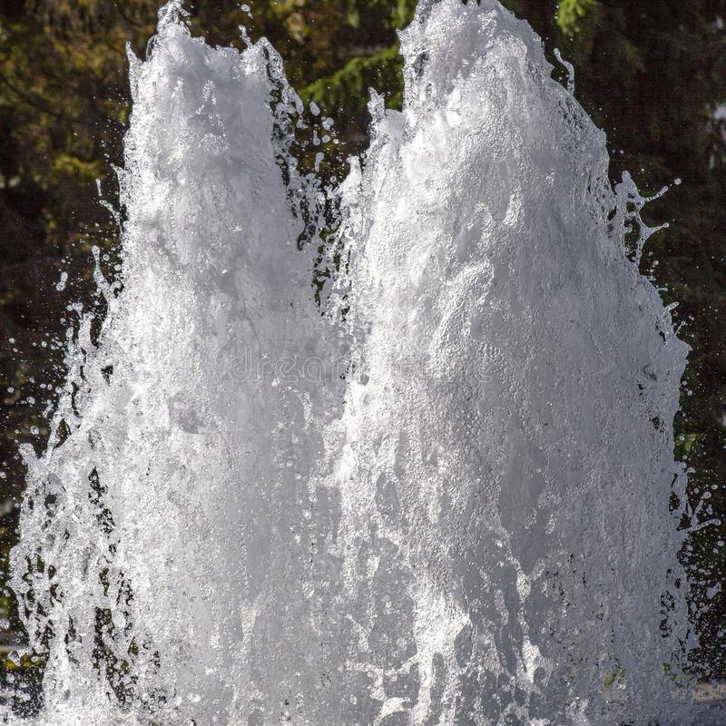 涌起向上在喷泉的水双喷气机 免版税库存照片