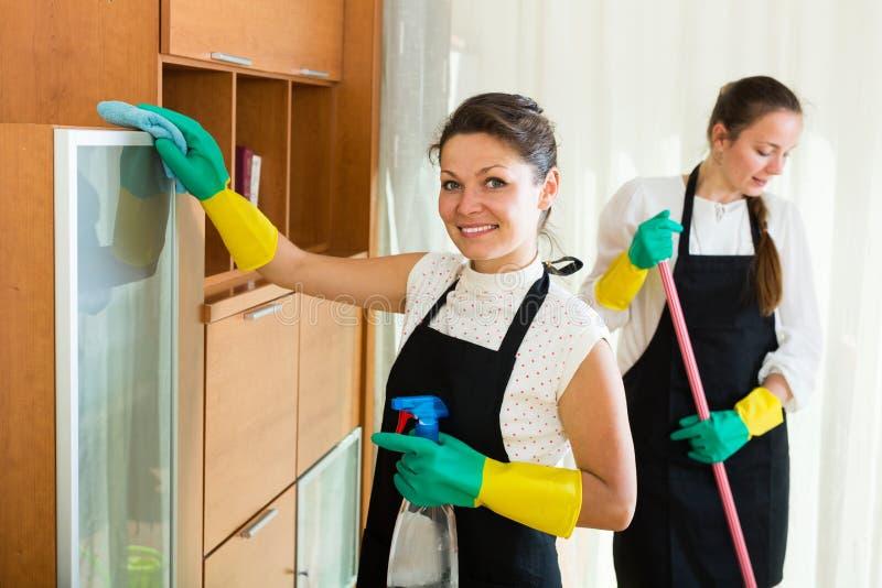 洗涤公寓的擦净剂 免版税库存照片