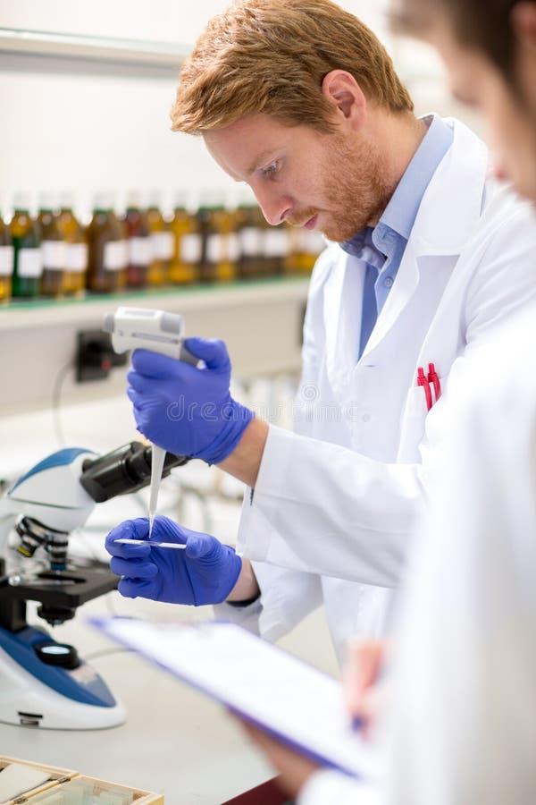 液体男性化工科学家位置样品在显微镜sli的 免版税库存照片