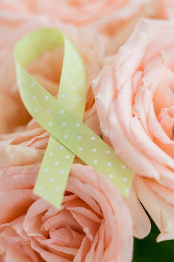 淋巴瘤丝带特写镜头在玫瑰的 库存图片