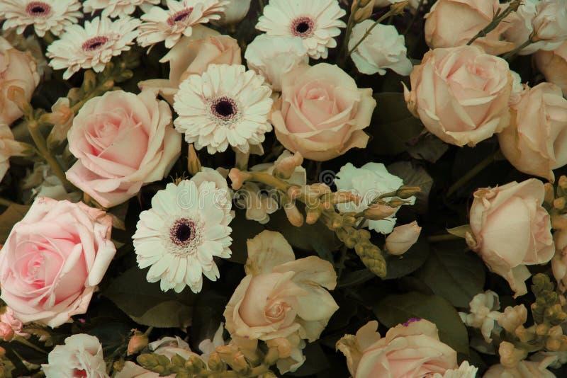 淡粉红和白色婚礼安排 免版税库存图片