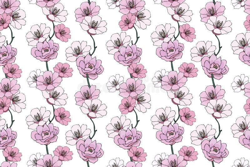 淡粉红的山茶花和栀子 向量例证