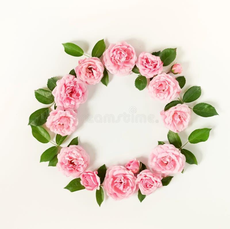 淡粉红的玫瑰花蕾和叶子花卉框架花圈在白色背景 免版税库存照片