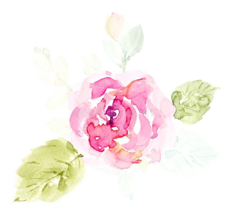 淡粉红色逗人喜爱的花水彩手画在白色背景 库存例证