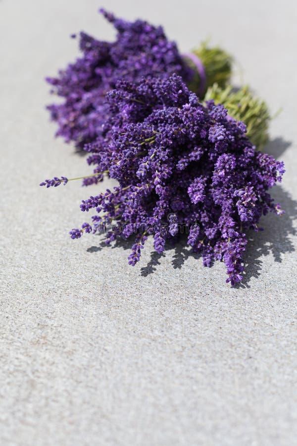 淡紫色两花束在桌上的 免版税库存图片