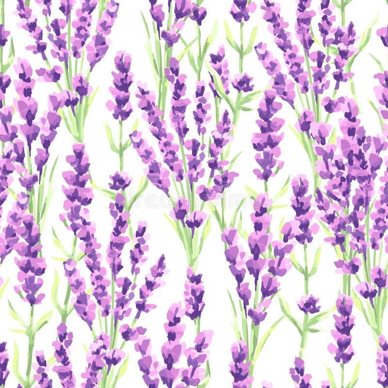 淡紫色开花无缝的样式 普罗旺斯草本的水彩自然例证 皇族释放例证