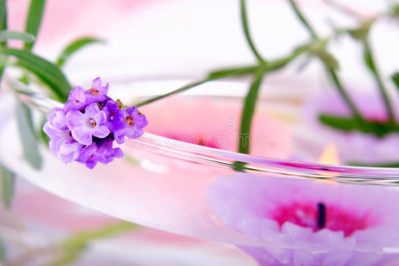 淡紫色温泉 免版税图库摄影