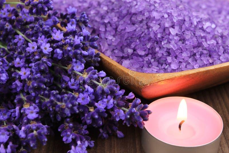 淡紫色温泉 库存图片