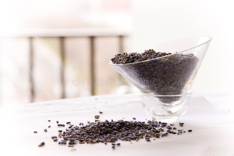 淡紫色离开茶 免版税库存图片