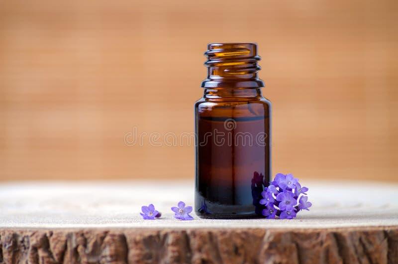 淡紫色精油瓶和鲜花芳香疗法的 免版税库存照片
