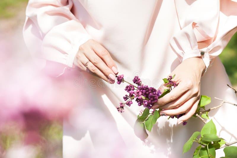 淡紫色花在树的一只手上 免版税图库摄影