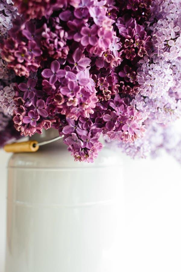 淡紫色花完善的紫罗兰色花束在一个时髦的花瓶的在白色背景 库存照片