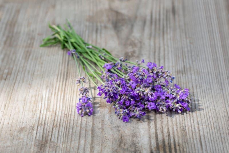淡紫色花束在木背景的 r 芳香疗法 图库摄影