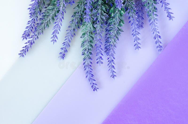 淡紫色花束在镶边白色灰色紫罗兰色背景放置 免版税图库摄影
