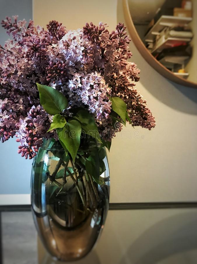 淡紫色花瓶 库存图片
