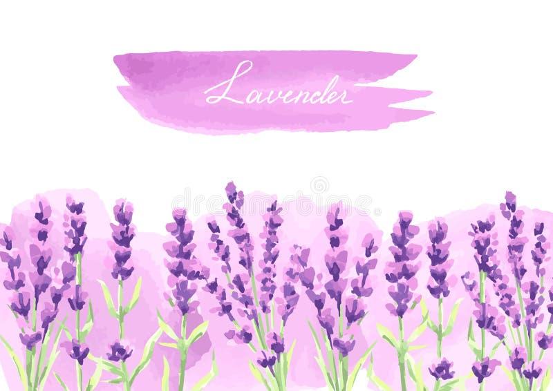 淡紫色花背景设计 皇族释放例证