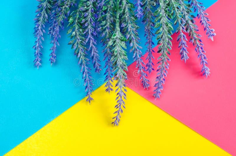 淡紫色谎言花束在五颜六色的蓝色黄色桃红色背景的 库存照片