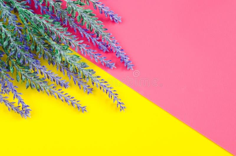 淡紫色谎言花束在双重黄色桃红色背景的 免版税库存图片